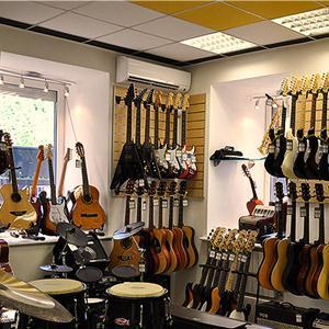 Музыкальные магазины Сусанино