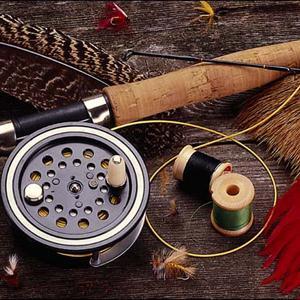 Охотничьи и рыболовные магазины Сусанино