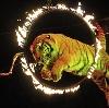 Цирки в Сусанино